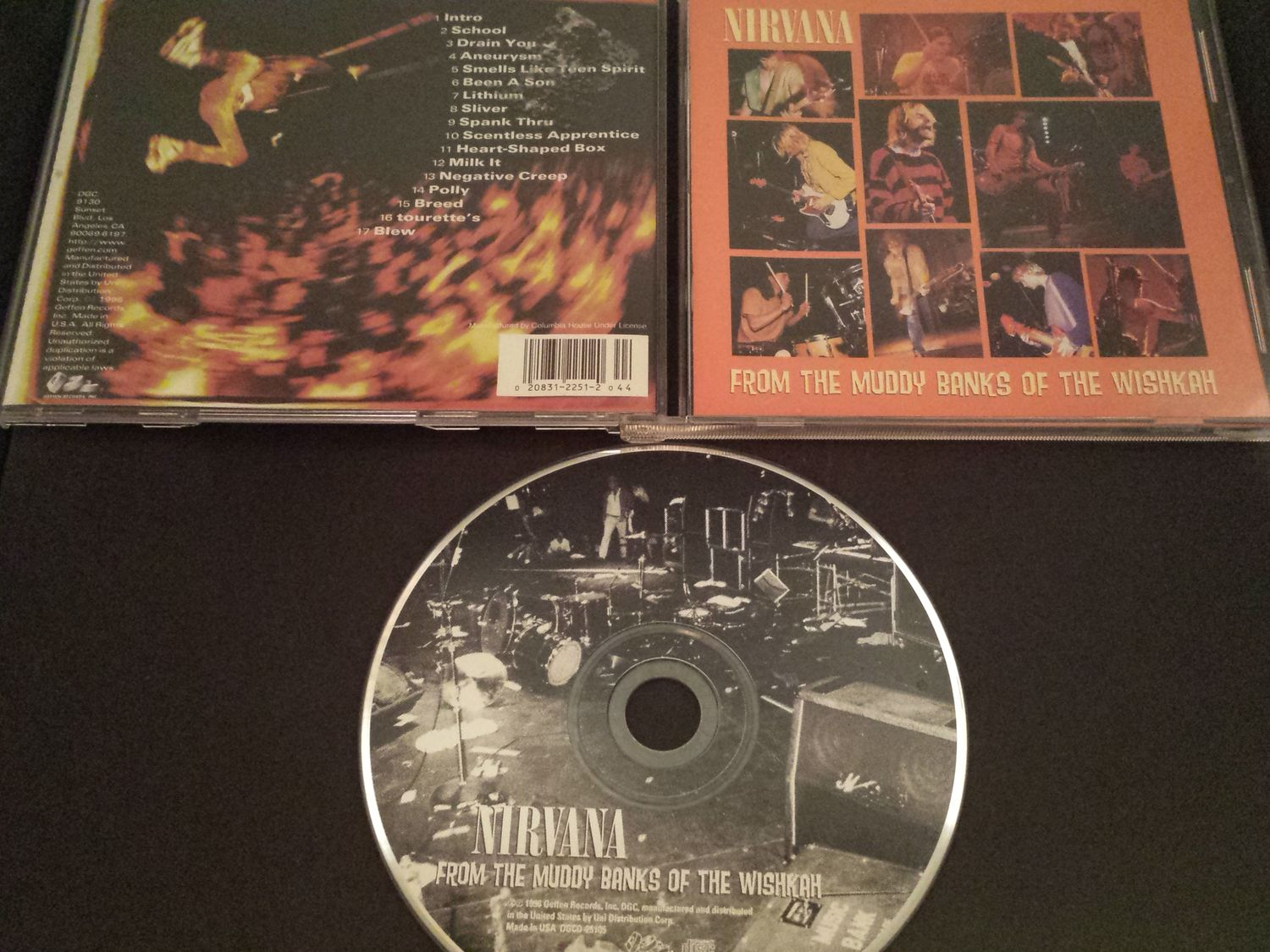 Nirvana - From The Muddy Banks Of The Wishkah Record